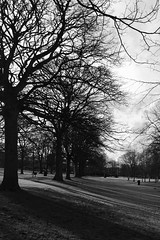 Shadows in the Park,Victoria Park,Aberdeen_feb 16_68 (Alan Longmuir.) Tags: shadow monochrome victoriapark aberdeen grampian watsonstreet shadowsinthepark