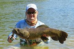 12552884_933809730042045_3933668033684746860_n (Nelson Lage - pescamazon.com.br) Tags: trip travel fish river fishing amazon bass peixe catfish xingu flyfishing casting tucunare pescaria amazonia peacockbass trombetas payara