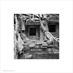 Preah Khan, Cambodia (Ian Bramham) Tags: tree temple photo cambodia roots angkor preahkhan ianbramham