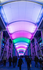 (JawshBeavz) Tags: show light people chicago colors night way walking hall illinois neon floor walk travellers meeting center hallway il convention conference suitcase trade briefcase businessmen mccormickplace