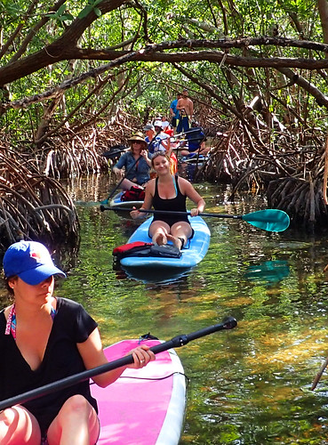3_5_16 Kayak Paddleboard Tour Sarasota FL 14