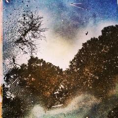 La pioggia che riempe i buchi formati sulla strada.. (Cristian Photocuba) Tags: road street verde square solitude strada cielo squareformat passion mayfair acqua pioggia reale iphone riflesso sogni pozzanghera iphoneography photocuba instagramapp