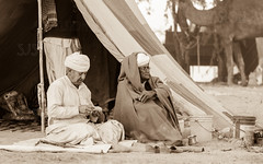 Pushkar-02400-20151120-_35A9418-Edit-2 (Swaranjeet) Tags: november portrait people india indian ethnic pushkar rajasthan mela rajasthani 2015 camelfair animalfair