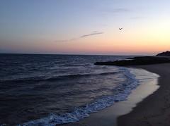 Cape Cod, Massachusetts (Nicolllle) Tags: sunset beach sunrise massachusetts cape cod