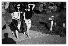 last days of summer  #004 (lynnb's snaps) Tags: 35mm apx100 agfa film sydney summer 2016 bw rodinal leicaiiic cv35mmf25ltm street blackandwhite blackwhite bianconero noiretblanc monochrome schwarzweis biancoenero 黒と白 bianconegro leica analogue analog lynnburdekinphotography 35mmfilm cv35mmf25colorskopar cv35mmf25colorskoparltm voigtlandercolorskopar35mmf25ltm ©copyrightlynnburdekinallrightsreserved rangefinder barnack