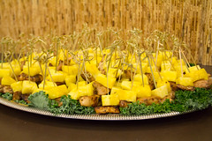 _MG_6199 (HACC, Central Pennsylvania's Community College.) Tags: york food chicken event pineapple snack scholar skewers