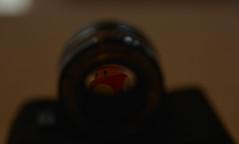 Mushroom (ruimendes1976) Tags: mushroom lens nikon bokeh mario nikkor luigi f25 105mm