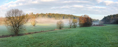 Morgennebel bei Monakam (Alexander Burkhardt) Tags: mist tree fog germany landscape deutschland spring nebel wiese bach landschaft baum strauch frhling schwaben neuhausen badenwrttemberg badliebenzell bachlauf monakam