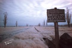 (Matteo Trevisani) Tags: grass infrared divieto infrarossi