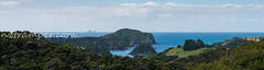 Northland New Zealand (87) (nztramper.com) Tags: new zealand northland