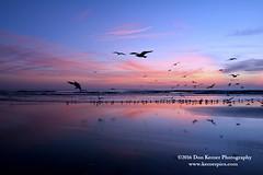 Sunrise_2032916 (Krnr Pics) Tags: beach sunrise florida crescentbeach staugustine krnrpics kernerpics