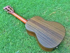 image5 (pazubox) Tags: ukulele newsusingcustomskytenor