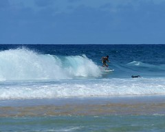 DSC_4351 e5 Banzai (J Telljohann) Tags: hawaii surf oahu surfer banzaipipeline