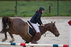 Concours de Saut (Claude Schildknecht) Tags: horse cheval jump concours pferd saut cso equitation pollionnay