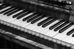 Old Piano (crezzy1976) Tags: york uk england blackandwhite bw music monochrome nikon piano instrument d3100 crezzy1976 photographybyneilcresswell