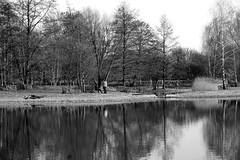 (simon_berlin62) Tags: life park city blackandwhite bw reflection berlin nature germany deutschland photography see spring europe sony stadt 5000 alpha stadtpark frhling neuklln britz  2016 ilce britzergarten schwarzweis berlinneuklln   berlinbritz britzergrten