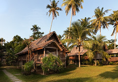 The Malaysian way of life (FAM Martin Z) Tags: life wood morning travel trees sun house tree green art sunrise hotel bush traditional palm resort hut gelb destination gras bushes canon5dsr 5dsr