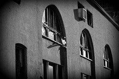 Moonlight (Do Gon) Tags: windows bw building brick glass construction details gray cement arches plaster sharp clay restoration renovation striking patches upgrade stucco rhythm brokenwindow facelift