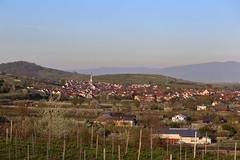 IMG_1634 (D.Phil) Tags: am natur himmel aussicht blick kaiserstuhl blauer frhling weinberge ihringen weitblick