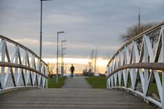 Bridge (Infomastern) Tags: bridge sunset people bro malm solnedgng mnniska limhamn limhamnssmbtshamn