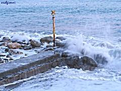 mare inca..ato (archgionni) Tags: sea storm nature water mare waves wind stones natura acqua vento onde tempesta scogli totalphoto