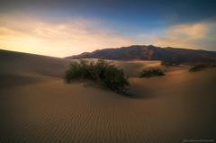 Mesquite Flat Dunes morning 1 (Ben_Coffman) Tags: sunrise starwars deathvalley ripples corduroy sanddunes deathvalleynationalpark mesquitedunes sandripples bencoffman bencoffmanphotography sculpteddunes