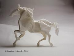 Caballo - Romn Daz. (@GonzaOrigami) Tags: horse valencia paper caballo origami international convention papel paperfolding papiroflexia xix pliegues pliegue origamianimal plegado romndaz plegar franciscojgonzlez papelplegado origamimodel origaminaturaleza origaminature gonzaorigami xixconvencininternacionalaepvalencia2016