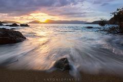 SPFATTNIDM (APINTUS) Tags: panorama seascape alberi landscape tramonto nuvole mare liguria sole sabbia lerici spezia scoglio