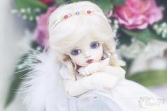 Mimi (✿felicity✿) Tags: cosette doll bjd thuesday yosd rosenlied