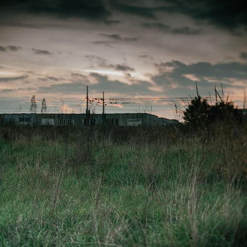 industrial wilderness