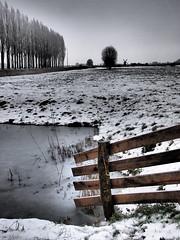 Kardinge (Michiel Thomas) Tags: winter snow holland frost groningen thaw kardinge dooi