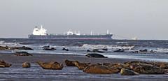 Donna Nook (vic_206) Tags: uk sea mar barco ship seals focas leonesmarinos donnanook canon300f4lis canoneos7d