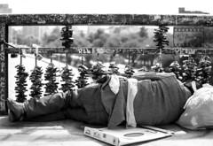 EL AMOR DESPUES DEL AMOR (S.Llaneza) Tags: de puente los candados