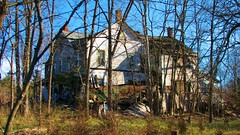 OLD HOUSE IN ACCORD NY (richie 59) Tags: autumn trees usa house ny newyork fall overgrown america accord outside us wooden vines weeds junk unitedstates weekend sunday faded newyorkstate woodenhouse nys wornout nystate fallingdown woodenstructure hudsonvalley 2015 fadedpaint ulstercounty midhudsonvalley midhudson ulstercountyny oldwoodenhouse rondoutvalley accordny 2010s townofrochester richie59 townofrochesterny dec2015 dec202015