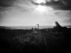Left is the only way (AJ.L) Tags: road ireland light shadow sun signs sunshine sign landscape exposure afternoon shadows extreme single giants grayscale northern left pointing causeway bushmills toward layered nonhdr