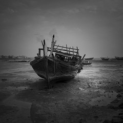 Dhow and a homeless cat (heshaaam) Tags: bw cat bahrain dhow muharraq