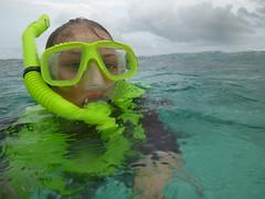 P1020605 (ericvdb) Tags: statepark snorkeling lyra floridakeys keylargo johnpennekamp