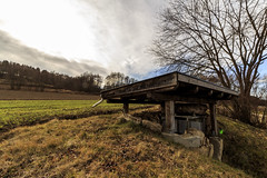 World War 2 Bunker (David Marousek) Tags: tree austria war bunker ww2 baum worldwar2