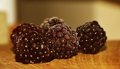 Blackberries (kristine_baskere) Tags: food macro berries blackberry indoor