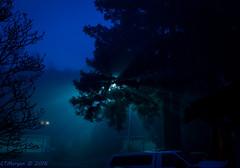 20160126-002.jpg (ctmorgan) Tags: california dublin fog streetlight unitedstates redwood filteredlight ledstreetlight