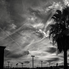 2016-02-12 forgetting king city (** RCB **) Tags: clouds squareformat memory infrared forget forgetting 2016 366 glowcloud