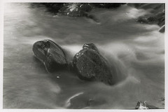 Long Exp Stones 35mm Scan (D.I. Hammonds) Tags: bw black film wet water monochrome rock stone 35mm river nikon rocks long exposure slow stones fast pebbles scan wash rush whit f80 nikkor rushing
