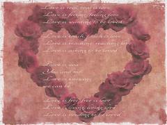 Love is (Swissrock) Tags: flowers wallpaper texture love rose photoshop lyrics heart song digitalart valentine johnlennon challenge loveis digitalpaint photomatix textureart pixlr