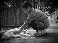 LIANG e il GATTO Bianco (Pier Luigi Dodi) Tags: china white cat children gatto bianco cina bambino luckycharm portafortuna