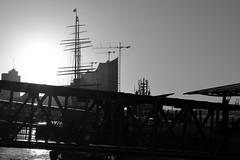 Landungsbrcken (Andreas Meese) Tags: sun skyline clouds sunrise nikon harbour crane outdoor hamburg wolken cranes hafen landungsbrcken sonne sonnenaufgang kran elbe elbphilharmonie kne d5100