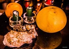 Nature morte avec coquillages et pamplemousse (nousku) Tags: food shells art fruit florida grapefruit fooddrink naturemorte