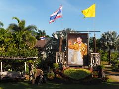 Thailand Wang Nam Khiao South-East Asia - Asien - (C) (hn.) Tags: copyright thailand asia asien heiconeumeyer seasia soasien southeastasia sdostasien king flag fahne flagge knig copyrighted thaiflag yellowflag nationalflag bhumibol kingofthailand bhumiboladulyadej adulyadej thaiking kingbhumibol kingbhumiboladulyadej nakhonratchasima bhumipol bhumiphol bhumipon kingbhumiphol kingbhumipol kingbhumipon nationalfahne wangnamkeaw wangnamkheow landesfahne wangnamkhiao wangnamkhieo gelbefahne nakhonratchasimaprovince chanwatnakhonratchasima nicslongstay wangnamkhiaodistrict
