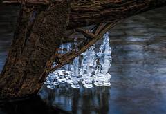 River Icicles (Dalliance with Light (Andy Farmer)) Tags: winter tree ice nature water river landscape frozen us newjersey unitedstates drcanal nj kingston princeton icicles millstoneriver intimatelandscape delawareandraritancanal