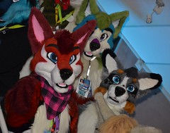 Nordic Fuzzcon 2016 387 (finbarzapek / SeanC) Tags: costumes animal furry convention furries nordic con fuzz nfc fursuit 2016 fursuits fuzzcon nfc2016