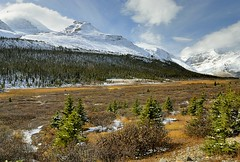 Canada, Rocky Mountains (Vittorio Ricci (THANKS+++2.1 MILLIONS VIEWS)) Tags: canadianrockies canadianrockymountains
